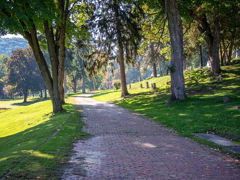 woodlawn-cemetery-walkway