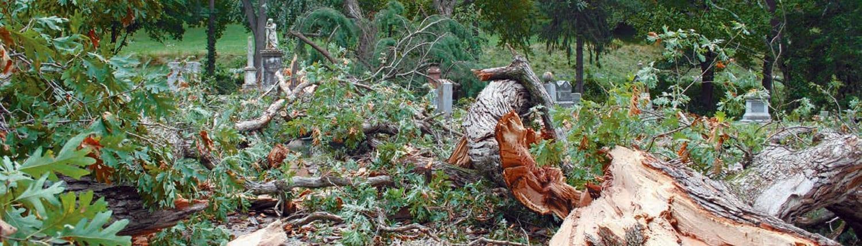 winonapost-tornado-damage-slider