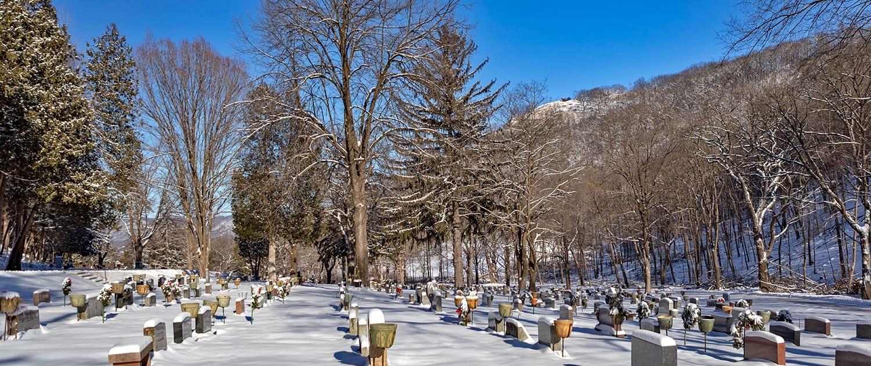 woodlawn-cemetery-winter-02