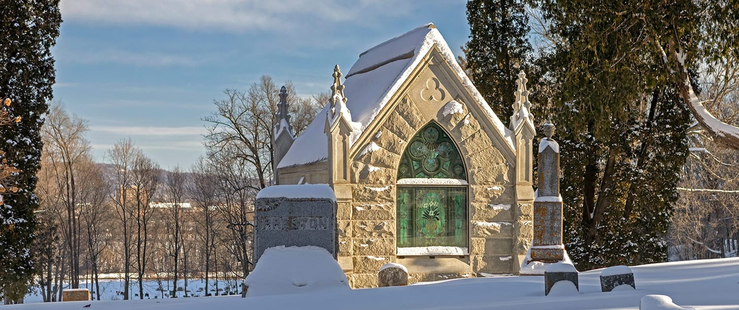 woodlawn-cemetery-winter-05