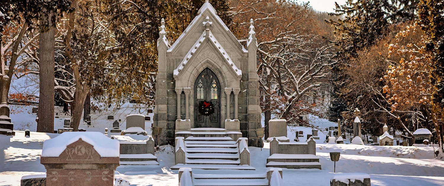 woodlawn-cemetery-winter-11